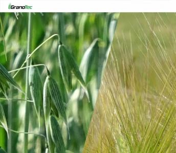 GRANOTEC – Czyszczalnia bębnowo-sitowa
